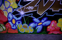 san_francisco-graf-haight_and_fillmore.jpg